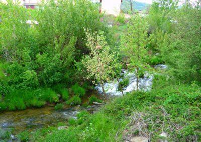 Rio Becedillas. Becedas